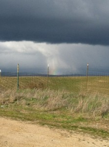 rainstorm-and-rainbow-223x300
