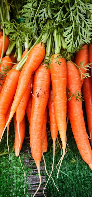 Vertical photo of a bunch of orange carrots at the local farmer's market.